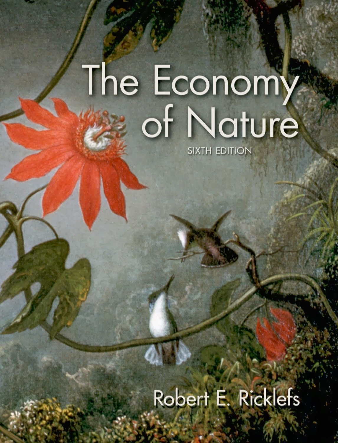 Test Bank Economy of Nature 6th Edition Ricklefs