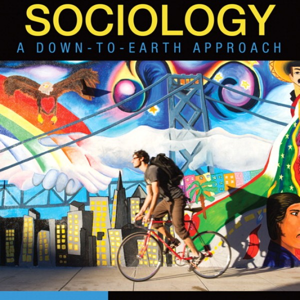Test Bank for Essentials Of Sociology A Down-To-Earth Approach 9/E by Henslin