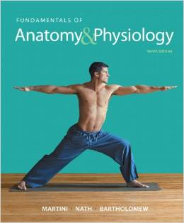 Fundamentals of Anatomy Physiology 10th Edition Martini Nath Test Bank
