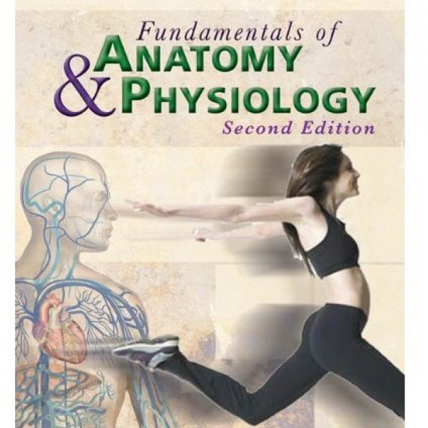 Test Bank for Fundamentals Of Anatomy And Physiology 2/E by Rizzo
