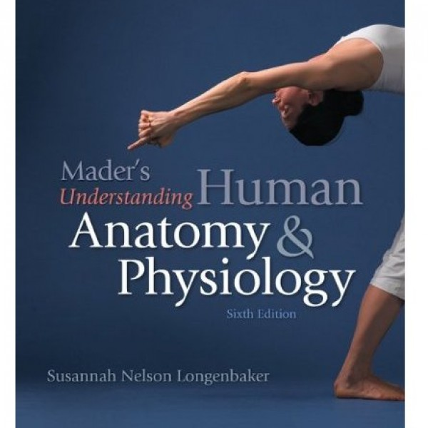 Test Bank for Maders Understanding Human Anatomy And Physiology 6/E by Longenbaker