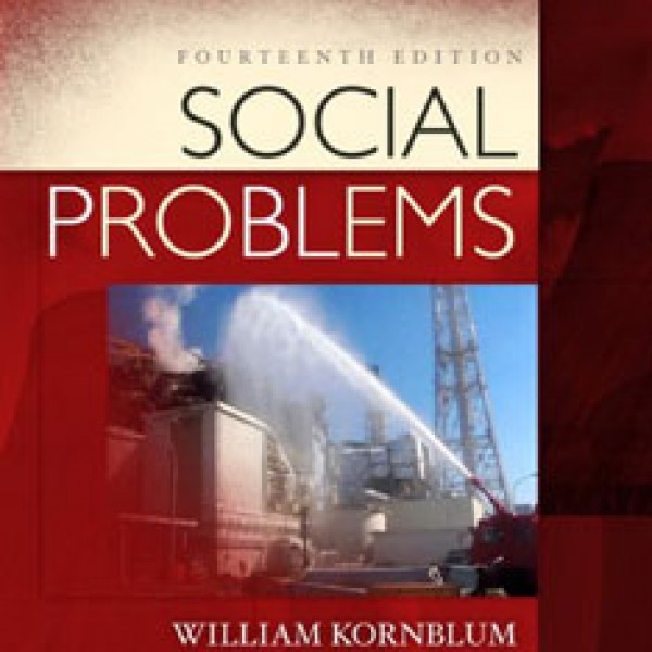 Test Bank for Social Problems 14/E by Julian