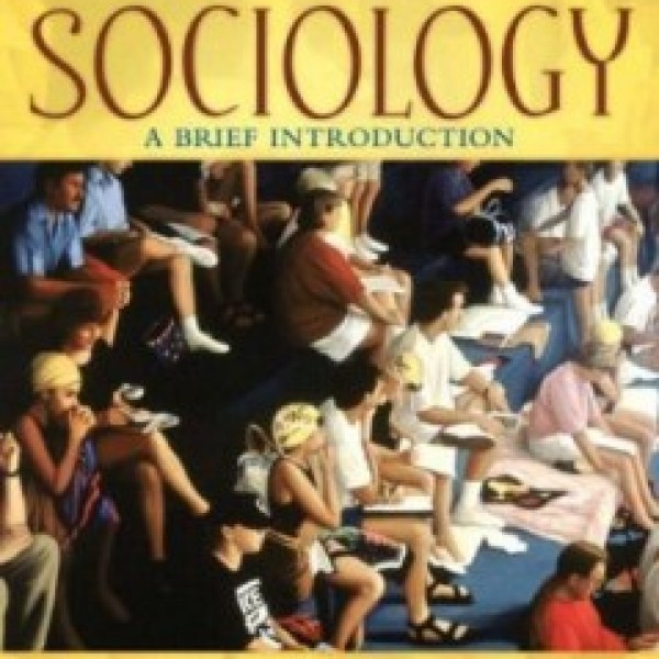 TestBank for Sociology A Brief Introduction 7/E by Thio