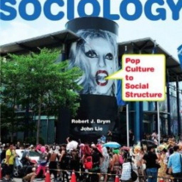 TestBank for Sociology Pop Culture To Social Structure 3/E by Brym