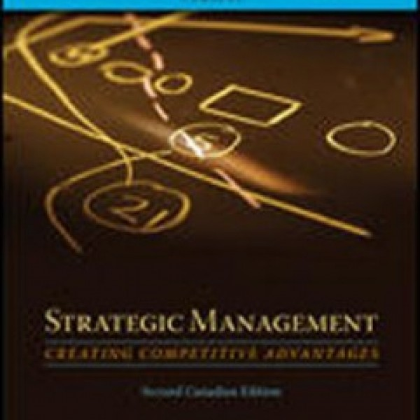 TestBank for Strategic Management Creating Competitive Advantages 2/E Canadian Edition by Dess