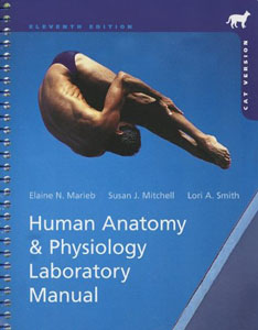 Test Bank For Human Anatomy & Physiology Laboratory Manual, Cat Version, 11 edition: Elaine N. Marieb