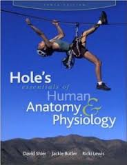 Test Bank Edition 12th Butler Anatomy Human Physiology Lewis or Shier Holes