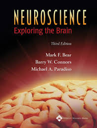 Test Bank Paradiso Edition Brain Exploring Conrs Neuroscience 3rd Bear the