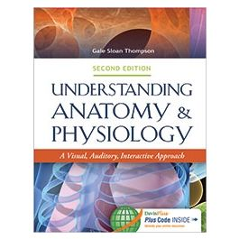 Test Bank for Understanding Anatomy and Physiology 2nd Edition by Thompson