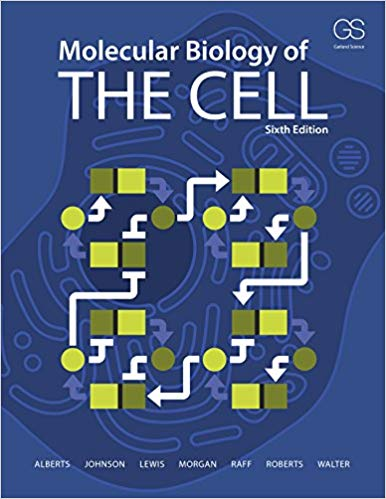 Test Bank for Molecular Biology of the Cell Sixth Edition