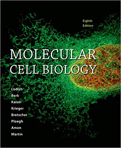 Test Bank for Molecular Cell Biology Eighth Edition