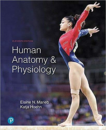Test Bank for Human Anatomy & Physiology (11th Edition) 11th Edition