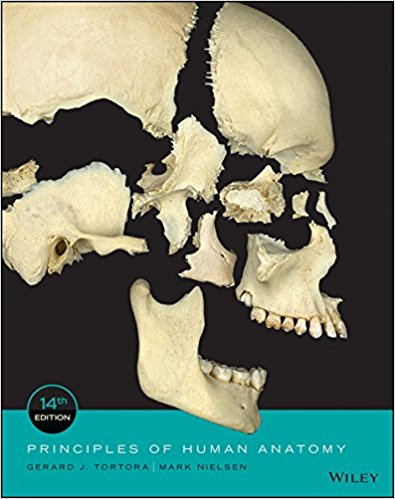 Test Bank for Principles of Human Anatomy 14th by Tortora
