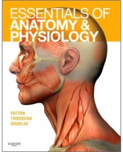 Solution Manual for Essentials of Anatomy and Physiology 1st by Patton