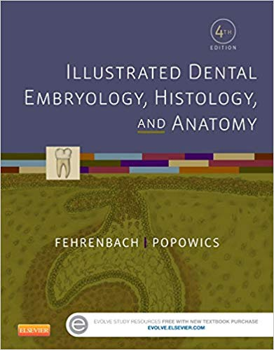 Test Bank for Illustrated Dental Embryology, Histology, and Anatomy 4th Edition