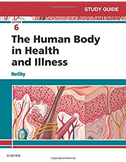 Solution Manual for The Human Body in Health and Illness 6th by Herlihy