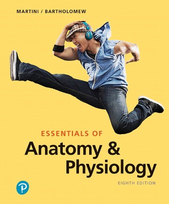 Test Bank for Essentials of Anatomy and Physiology, 8th Edition, Frederic H. Martini, Edwin F. Bartholomew, ISBN-10: 0135205573, ISBN-13: 9780135205570